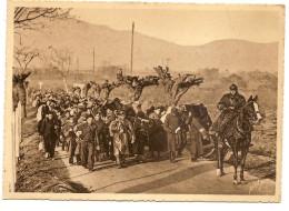 Guerre D' Espagne  Un Convoi De Miliciens Sur La Route De CERET AU  BOULOU - Francia