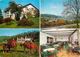 Animaux - Chevaux - Restaurant-Pension Schau Ins Land  - Bes M Jochem - Trassem - Saarburg - Multivues - Voir Scans Rect - Chevaux