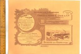 BUVARD : Imprimerie LUXOVIENNE Etablissements L PAGE & Cie LUXEUIL LES BAINS Haute Saône Rue De La Gare - Blotters