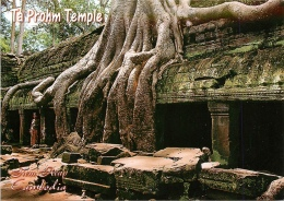 CPSM Cambodge-Ta Prohm Temple  L2174 - Cambodia