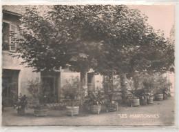 Romaneche THORINS - Hotel Relais De La Gare - Les Maritonnes  - CPSM° - France