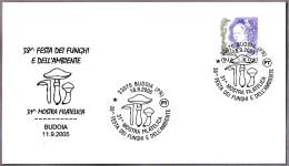 38 FIESTA MICOLOGICA. Setas - Mushrooms. Budoia, Pordenone, 2005 - Champignons