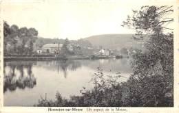 Hermeton-sur-Meuse - Un Aspect De La Meuse - Hastière