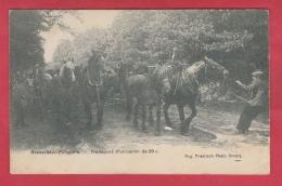 Brasschaet Polygone - Transport D'un Canon De 28 C - 1912 ( Voir Verso ) - Brasschaat