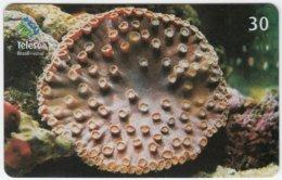 BRASIL B-437 Magnetic Telesc - Animal, Sea Life, Coral - Used - Brésil