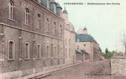 CARLSBOURG : Etablissement Des Frères (carte Couleur Oblitérée à Marche Le 20 Juin 1910) - Paliseul