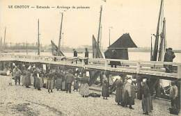 E-16 370 : LE CROTOY  ESTACADE  ARRIVAGE DE POISSONS - Le Crotoy
