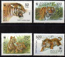 RUSSIE - Superbe Série Complète Neuve De Tigres - 1992-.... Federation