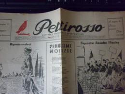 1946 - Settimanale Pettirosso -- Giornale Settimanale Umoristico -- - Italiane (dal 1941)