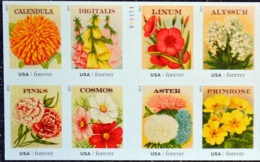 USA 2013 #4754/63 Seeds Flowers 0.49 X 8 MNH ** - United States