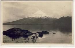 VALPARAISO - 1927,  Lago Todos Los Santos, Panorama - Chile