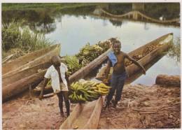 AFRIQUE NOIRE,AFRICA,AFRIKA,CAMEROUN,CAMEROON,ENFANTS AU TRAVAIL,TRANSPORT DE BANANES - Cameroun