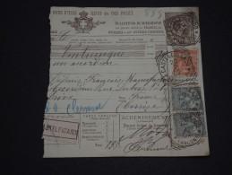 ITALIE - Colis Postal En 1902 De Castelfidardo Pour La France ( Transport D 'accordéon) - A Voir - L 1342 - Paketmarken