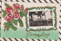 6AI3216 CARTE DOUBLE BONNE ANNEE FER A CHEVAL HOUX PETITE PHOTO CASE ??? 2 SCANS - New Year