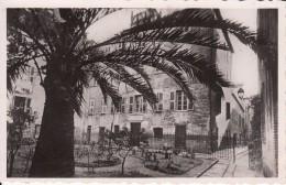 G , Cp , 20 (2A) , AJACCIO , Maison Napoléon - Ajaccio