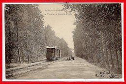 62 - Le TOUQUET - PARIS PLAGE --  Le Tramway Dans La Forêt - Le Touquet