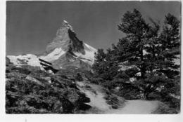 ZERMATT Riffelalp Matterhorn - VS Valais