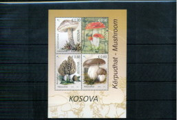 Kosovo 2016 Mushrooms  Block MNH - Pilze
