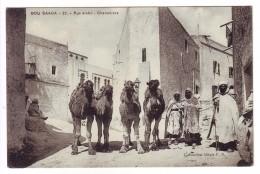 Carte Postale - ALGERIE - BOU SAADE - 22. - Rue Arabe - Chamelier - Algérie