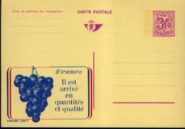Carte Postale Neuve PUBLIBEL 2560F France RAISINS - Stamped Stationery