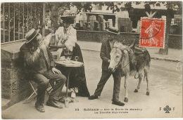 Route De Chatenay Malabry Ane Et Bagarre Au Siphon Donkey - Donkeys