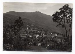 Italie--SCOPOLO  M.737 --1966--Panorama Con Sfondo Monte Perol M.1430 éd  Pambianchi - Italie