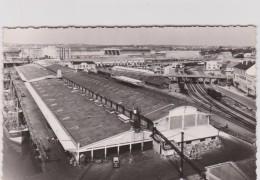 Morbihan :  LORIENT  : Le  Port De  Pêche , Les  Halles De La  Criée  , Embranchement Du Train De  Marée - Lorient