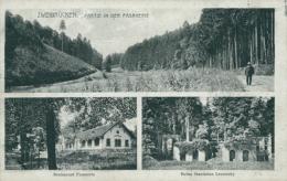 DE ZWEIBRUECKEN / Partie In Der Fasanerie, Restaurant Fasanerie, Ruine Stanislaus Leszinsky / - Zweibruecken