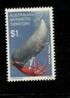AUSTRALIAN ANTARCTIC TERRITORY 1973  POSTFRIS MINT YVERT 34 - Territoire Antarctique Australien (AAT)
