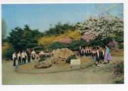 KOREA, Tridimensional, Double Image, 3D, Lenticulaire  ( 2 Scans ) - Korea, North