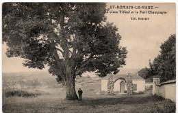 Saint Romain Le Haut : Le Vieux Tilleul Et Le Fort Champagne (Editeur Bonnard - Phototypie Coqueugniot Et Truchot, Autun - Autres Communes