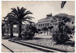 MESSINA - PALAZZO DI GIUSTIZIA- 1959 - Messina