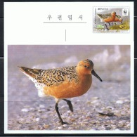 NORTH KOREA 2015 WWF RED KNOT BIRD POSTCARD MINT - W.W.F.