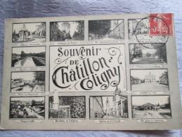 SOUVENIR DE CHATILLON COLIGNY . MULTIVUES - Chatillon Coligny