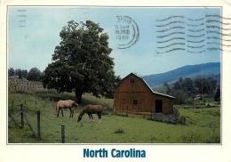 CPSM North Carolina   L2181 - Etats-Unis
