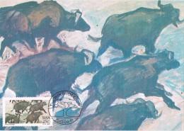 19025. Tarjeta Maxima RSA (South Africa)  1983. Painters Bufalos - Animalez De Caza