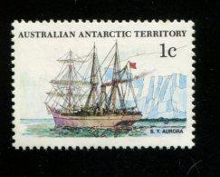 AUSTRALIAN ANTARCTIC TERRITORY 1981  POSTFRIS MINT YVERT 37 - Territoire Antarctique Australien (AAT)