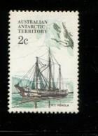 395121736 AUSTRALIAN ANTARCTIC TERRITORY 1981  POSTFRIS MINT YVERT 47 - Neufs