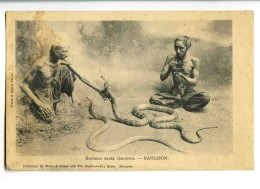 17816   -   Rangoon   -   Burmese Snake Charmers   -   Birmanie - Myanmar (Birma)
