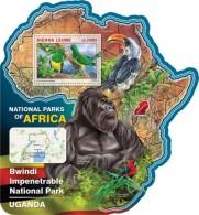 Sierra Leone. 2016 Bwindi Impenetrable National Park UGANDA. (518b) - Gorilles