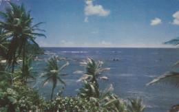 Beach Scene , TOBAGO , PU-1957 - Antilles