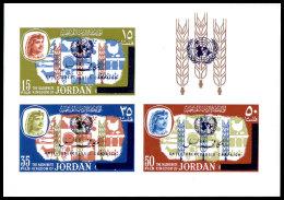 Jordan, 1966, Anti Tuberculosis Campaign, WHO, OMS, United Nations, MNH Imperforated Overprinted, Michel Block 34 - Jordan