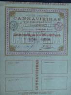 1 MINES DIAMANTS CANNAVIEIRAS Bresil Action 20 £ -500 FR - Autres