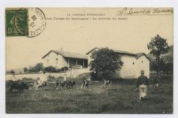 CPA: 69 - ST LAURENT DE CHAMOUSSET (D'APRÈS INFO.) - UNE FERME EN MONTAGNE - LA RENTRÉE DU BÉTAIL - - Saint-Laurent-de-Chamousset