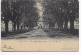 Tongerlo : Abdij Van Tongerloo ;Groote Dreef - Westerlo