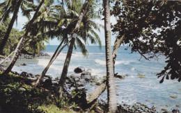 TAHITI  COTE EST (dil268) - Francia