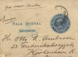 Argentina   Postal Stationery  Wrapper To Denmark  S-2053 - Postal Stationery