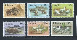 Tokelau 1986 Fauna Set 6 MNH - Tokelau