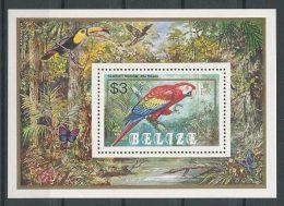 BELIZE 1984 Bloc N° 54 ** Neuf = MNH Superbe Cote 9 €  Faune Oiseaux Perroquet Ara Macao Birds Animaux - Belize (1973-...)