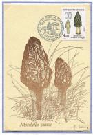 (cl. 26 - P. 50) France N° 2490 CM - Champignons : Morilles - - Pilze